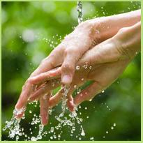 De internationale dag van het Handen wassen