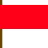 Betekenis strandvlaggen - Rode vlag