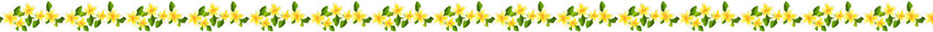 lijn gele bloemen