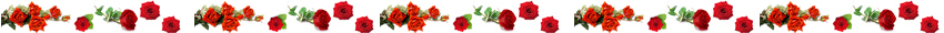lijn rozen
