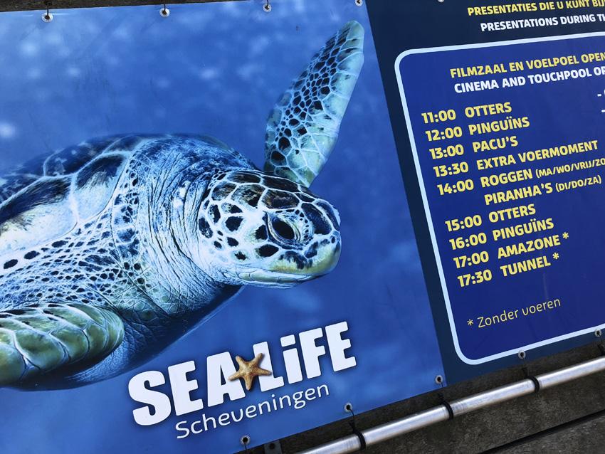 Verjaardagsfeestje bij Sea Life