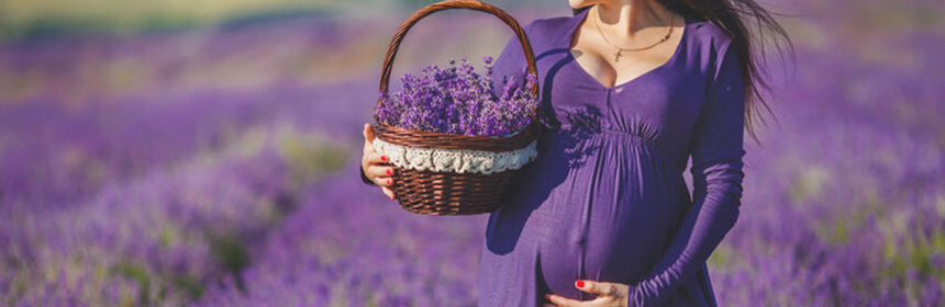De leukste zwangerschapskalenders