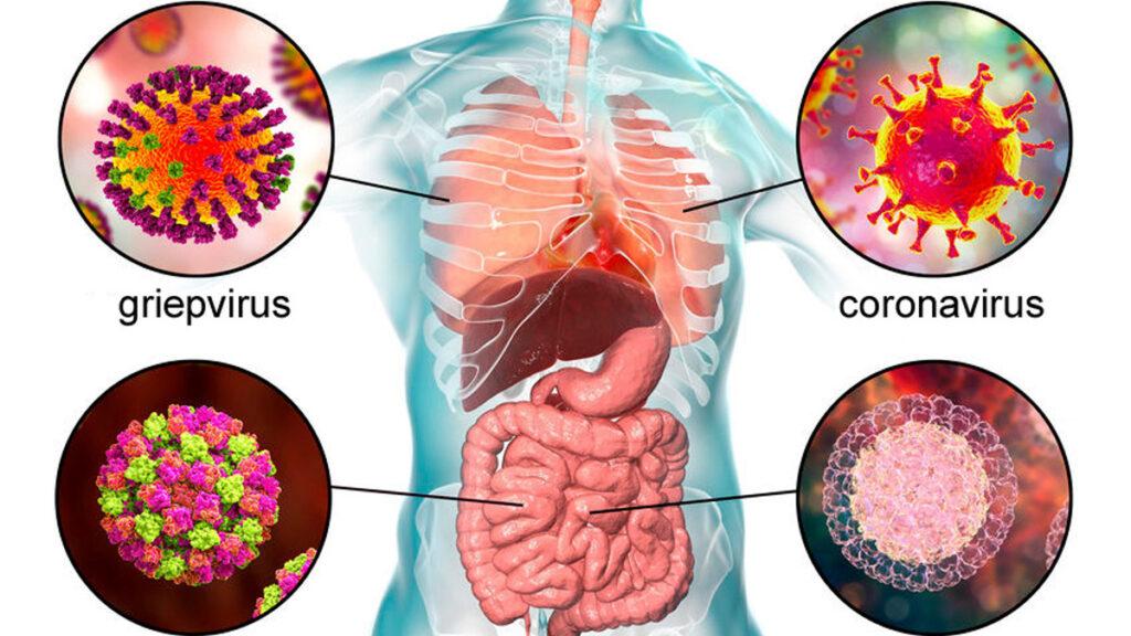 Coronavirus, covid-19 of wuhanvirus