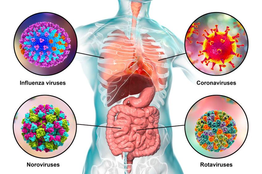 Coronavirus uitgelegd aan kinderen