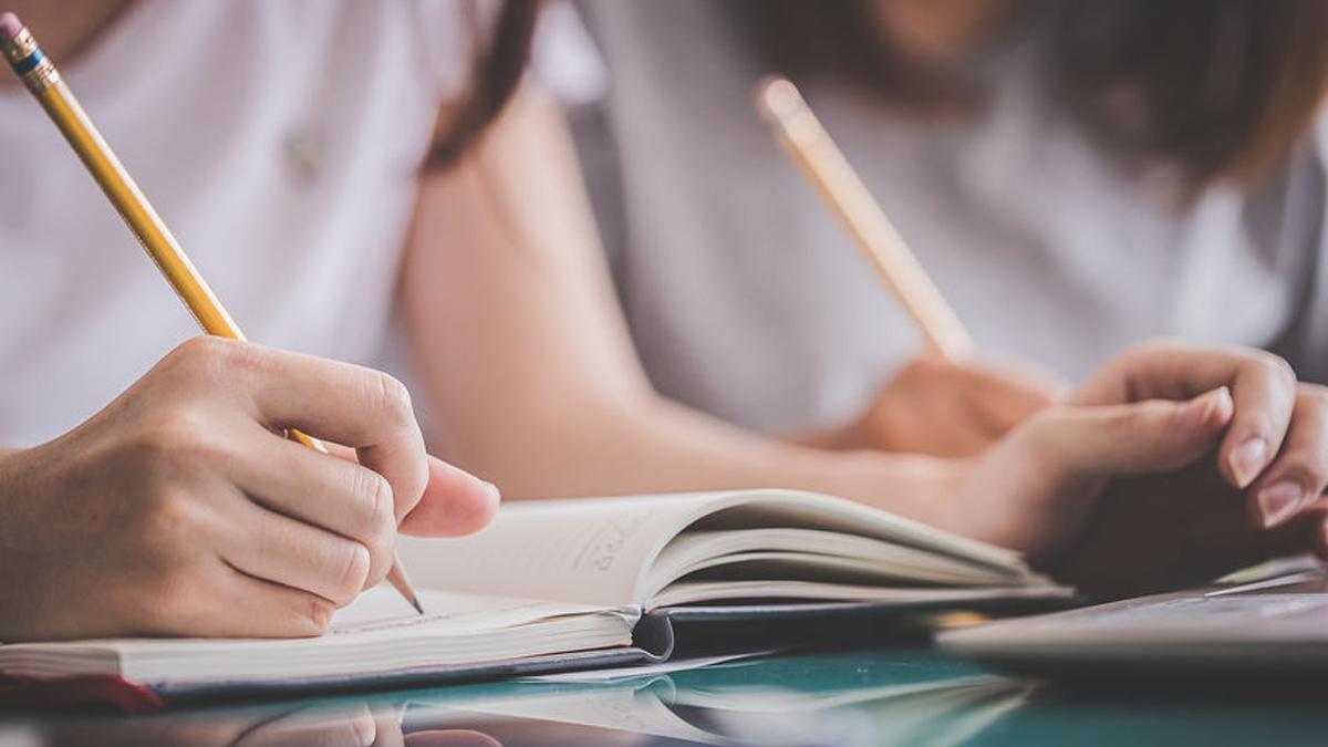 School, studie en werk pubers