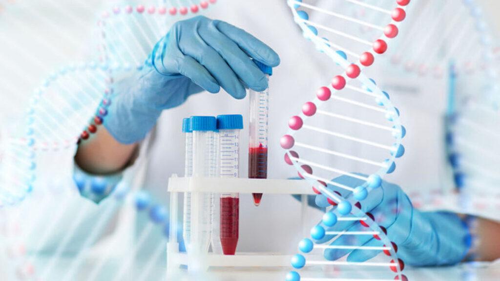 DNA en genen - Erfelijke materiaal