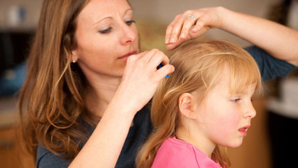 Hoofdluis: Help, mijn kind heeft last van hoofdluizen!