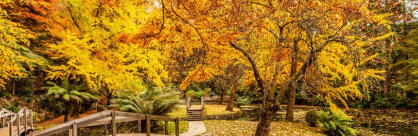 De leuke kanten van de herfst