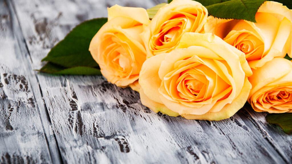 Tips bij verwerking van rouw. Hoe verwerk je groot verdriet?